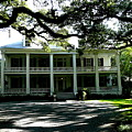 Plantation Framed By Live Oaks by Angie Covey