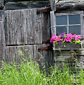 Planter On Log Barn by George Sanquist