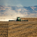 Planting Orangic Wheat by Todd Klassy