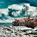Plassey Wreck by Gabriela Insuratelu