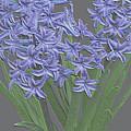 Plaster Hyacinth by Debra     Vatalaro
