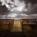 Platform To The Sky by Michelle Saraswati