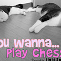 Play Chess? by Pookie Pet Portraits