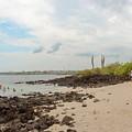 Playa De La Estacion On Santa Cruz Island In Galapagos by Marek Poplawski