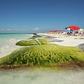 Playa Norte, Isla Mujeres by Aivar Mikko