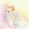 Playful Cat IIi by Elizabeth Lock