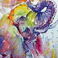 Playing Elephant by Kovacs Anna Brigitta