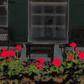 Pleasant Evening by Rosalie Scanlon