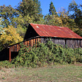Pleasant Valley Barn 14 by Lydia Miller