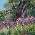 Plein Air Purple by Mary Giacomini