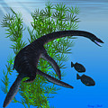Plesiosaurus by Corey Ford