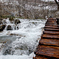 Plitvice Lakes Boardwalk by Lisa Boland