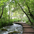 Plitvice Lakes National Park by Travel Pics