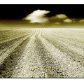 Ploughed 1 by Mal Bray