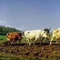 Ploughing In Nivernais by Rosa Bonheur