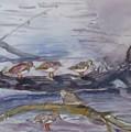 plovers in Jost VanDyke by Anne McMath