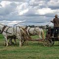 Plowing In Lancaster County by Eleanor Bortnick
