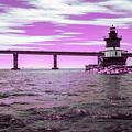 Plum Beach Lighthouse In Ir by Brian Hale