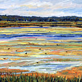Plum Island Salt Marsh by Pamela Parsons