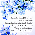 Plumbago   Poem by Karin  Dawn Kelshall- Best