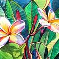 Plumeria Garden by Marionette Taboniar