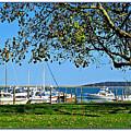 Plymouth Harbor by Joan  Minchak