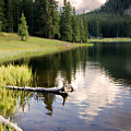 Poage Lake by Lana Trussell
