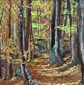 Podzim V Lese Po Pesine Behaj Bezci by Pablo de Choros