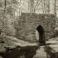 Poinsett Bridge-ir-8 by Joye Ardyn Durham