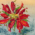Poinsettia by Patricia Caldwell