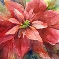 Poinsettia  by Sherry Jarvis