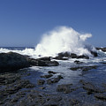 Point Lobos Seascape 2 by Stan and Anne Foster