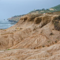Point Loma Coastline by Susan McMenamin