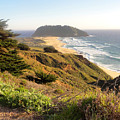 Point Sur, California Coast by Charmaine Anderson