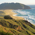 Point Sur National Park by Charmaine Anderson
