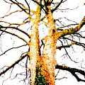 Pointillised Tree by Julia Woodman