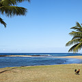 Poipu Beach by Kelley King