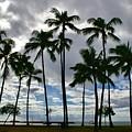 Poka'i Bay, Waianae, Hawaii  by Craig Wood