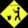 Pokemon Go by Shane Bechler