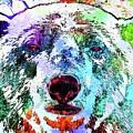Polar Bear Colored Grunge by Daniel Janda