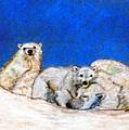 Polar Bears With Love by Marie Loh