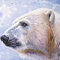 Polar Blue by J W Baker
