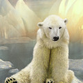 Polar Cub by Carol Cavalaris