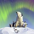 Polar Opposites by Jerry LoFaro