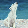 Polar Pup by Terry Lewey