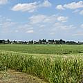 Polder Near Reeuwijk-1 by Casper Cammeraat