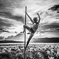 Pole Dance Reach Hdr by Scott Sawyer