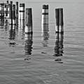 Poles In The Water by Gabriela Insuratelu