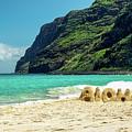 Polihale Aloha by Gary Eyring