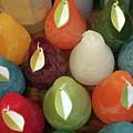 Polychromatic Pears by Rick Locke